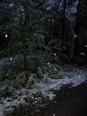Snow dark