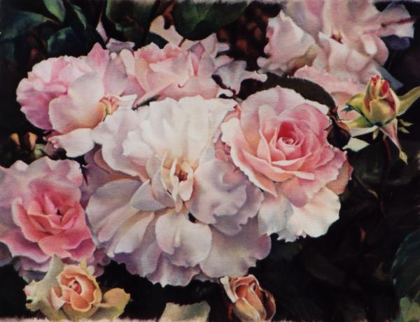 10 roses