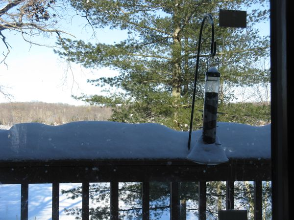 Deck feeder sun