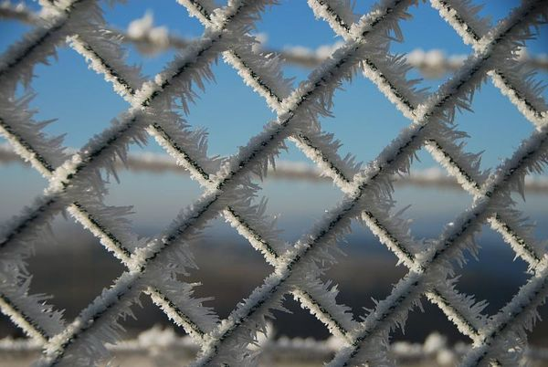 Link chain fence winter