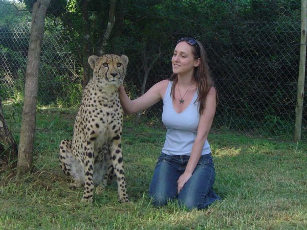 SA cheetah