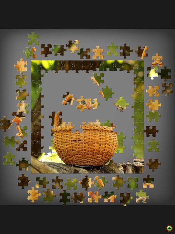 Puzzle cat