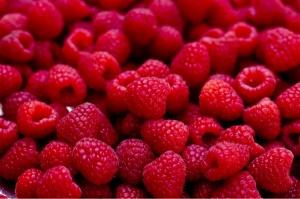 fruit raspberries