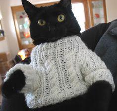 black kitteh w sweater