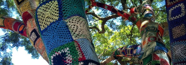 yarnbombed trees.jpg