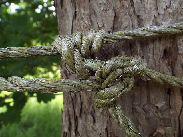 rope links