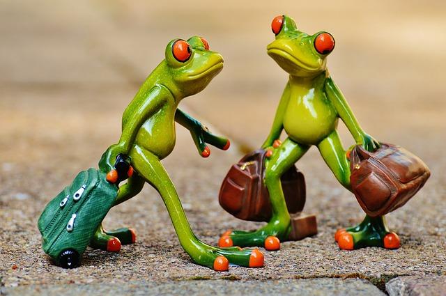 frogs-897387_640.jpg