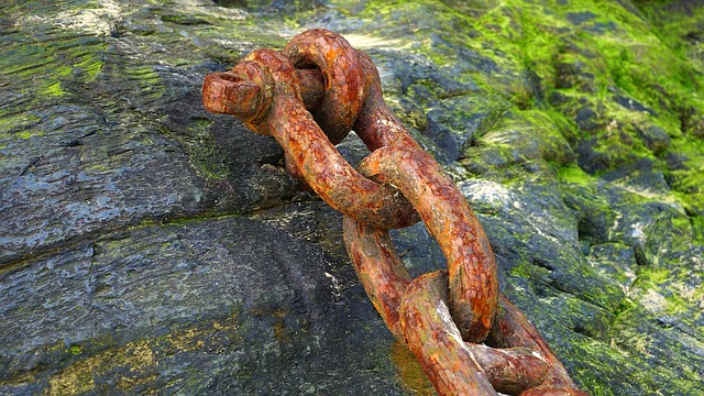 chain rusty moss.jpg