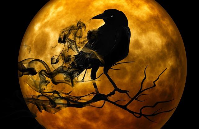raven-988218_640.jpg