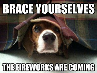 4th dog brace yourselves