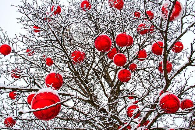 winter-3853249_640.jpg