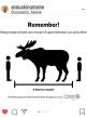 corona moose