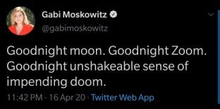 goodnight zoom