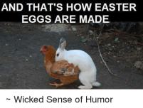 how eggs made