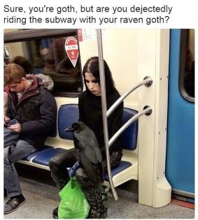 raven-goth