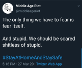 scared of stupid