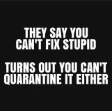 stupity