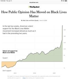 public opinion blm