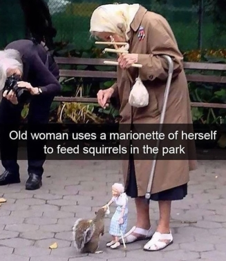feeding squirrels
