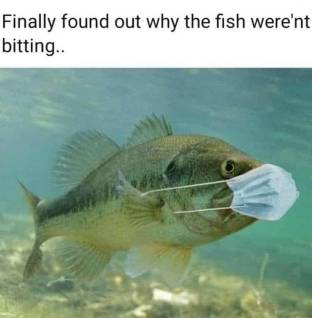 fish not bitting