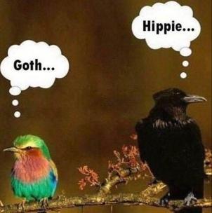 goth hippie
